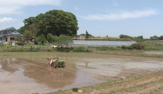 福島の現実を知るドキュメンタリー10選。原発、農家、避難生活の実情。